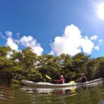 石垣島旅行 いつかまた行きたい!〜2日目•西表島マングローブカヤック&ケイビング〜